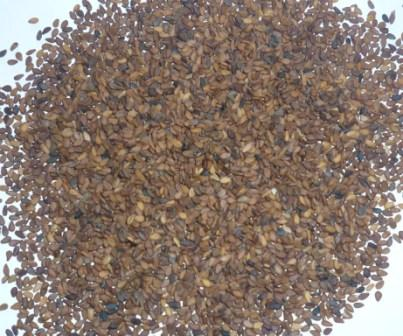 Buy Sesame Seeds from Bangladesh