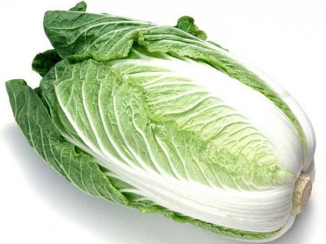 Buy Chinese cabbage