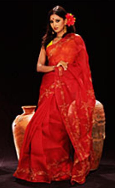 Buy Cotton Sari