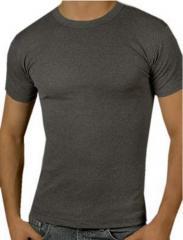 Men's Body Fit T-Shirt