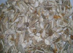 Supply of Crushed Bone from Dhaka, Bangladesh (For Gelatin Manufacturing factory)